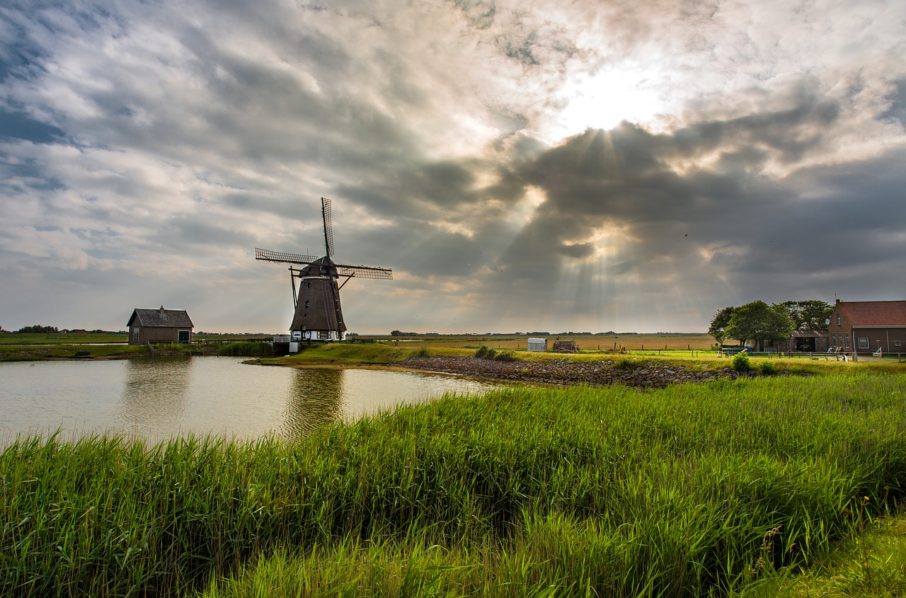 molen in nederlands landschap met water en weide